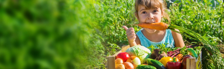 montessori warzywa