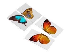 układanka Montessori przedszkole motyle