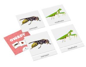 Karty trójdzielne Montessori owady