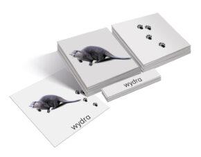 karty Montessori zwierzęta