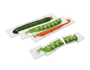 wycinanka Montessori warzywa