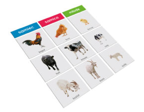 karty Montessori zwierzęta i dzieci