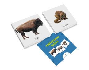 karty trójdzielne Montessori zwierzęta