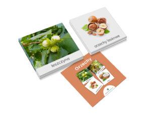 karty trójdzielne Montessori orzechy