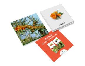 karty trójdzielne Montessori owoce