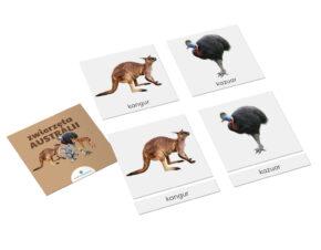 Karty trójdzielne Montessori zwierzęta Australii