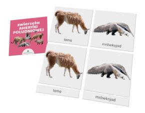 karty trójdzielne Montessori zwierzęta Ameryka Południowa