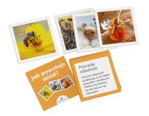 karty Montessori miód